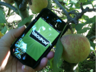Groupon_apple_picking-feature
