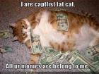 lolcat_money