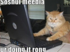 social-media-lolcat-300x249-feature