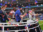 ea_madden_superbowl