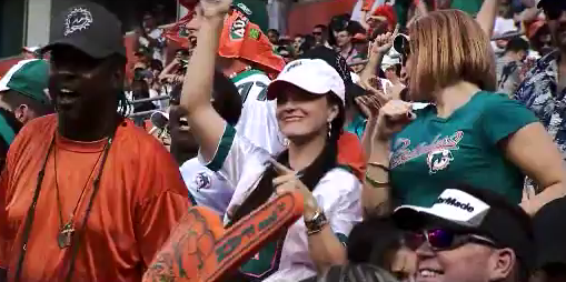 dolphins-fans