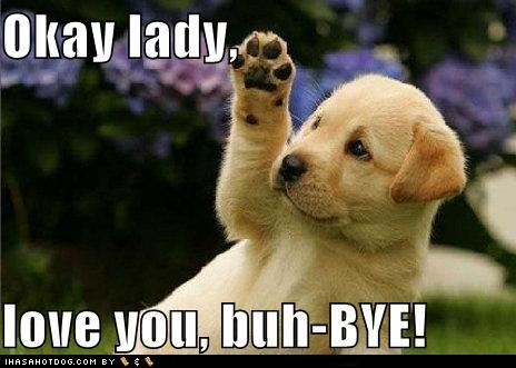 cute-puppy-pictures-okay-lady-love-you-buh-bye