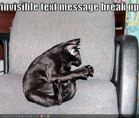 funny-pictures-black-cat-invisible-text-message-breakup