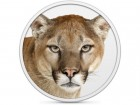 mountain lion-feature