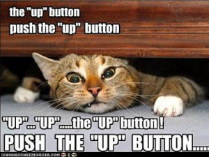up_button