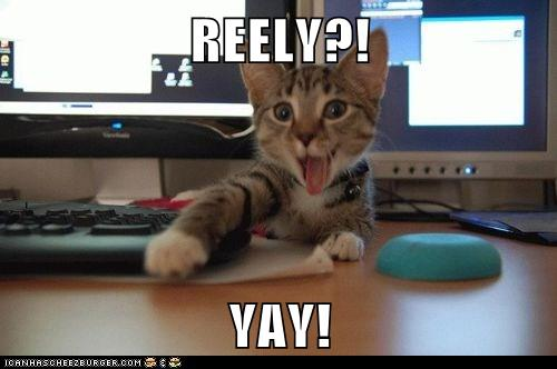 really_yay_lolcats