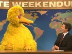 snl big bird