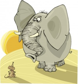 elephantmouse