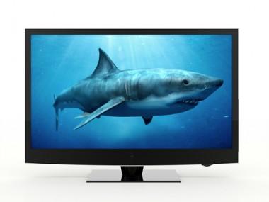 shark tv