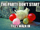 party_dont_start