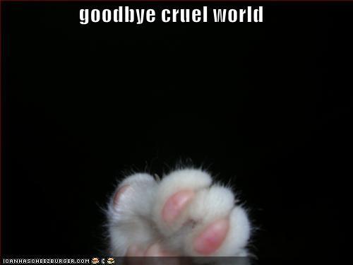 Funny Goodbye | www.imgkid.com - The Image Kid Has It!