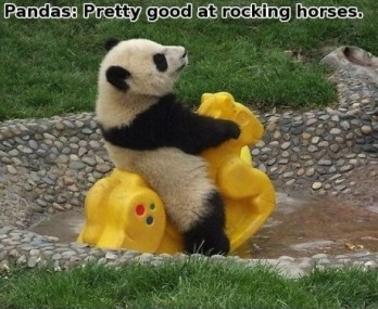 panda imgur